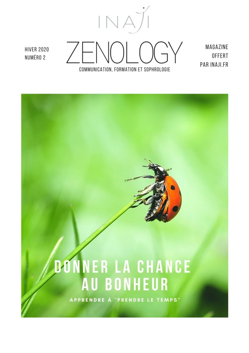 Mag Zenology N°2 couverture